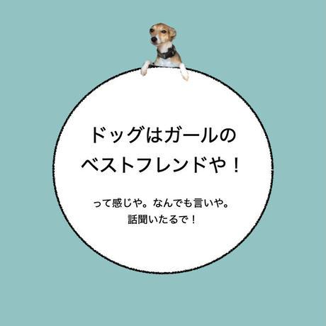 """カーマグネット """"Dogs are girl's best friend""""【送料無料】"""