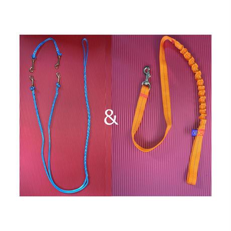 2頭引き専用ラインセット(ネックライン付き)