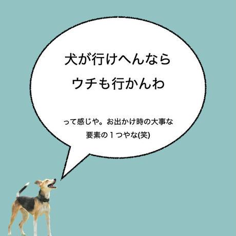 """カーマグネット """"If my dog can't go, I'm not going.""""【送料無料】"""