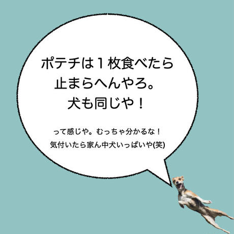 """カーマグネット """"Potato Chips""""【送料無料】"""