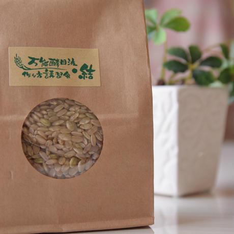 完全無農薬玄米26年度産【いのちの壱】古米 200g