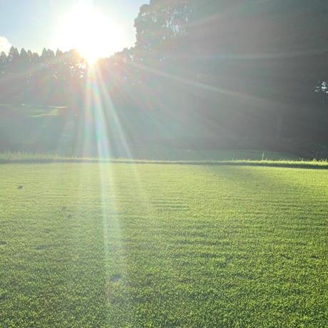 200セット限定!! 秋の紫外線対策‼! nattoローション【日焼け止め】【美容液】各50ml.
