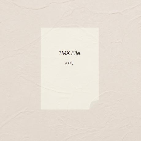 どんぐり問題 小1(File)