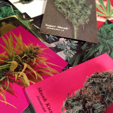【The   Marijuana  Stories  SeriesⅡ】 Full Set