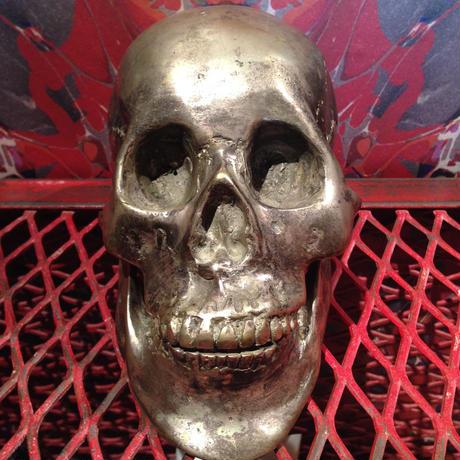 Artwork  Vanitas  Skull【Ⅱ】