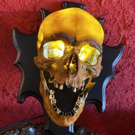 Realistic  Skull Wall Lamp