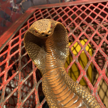 King Cobra Ceramic Incense Burner    【BROWN】
