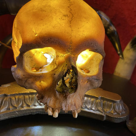 Realistic  Skull Antique Stand  Lamp