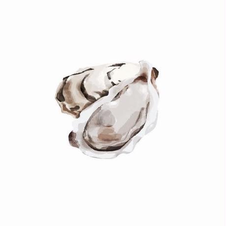 牡蠣がデザインモチーフのピアスイヤリング//OYSTER DESIGN PIERCE・EARRINGS | HAKU-GLASS CLEAR