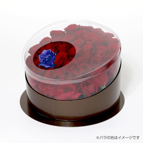 En(red-サファイア-Sep. 9月)