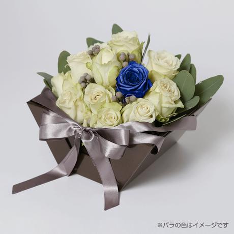 Kikko(white-サファイア-Sep. 9月)