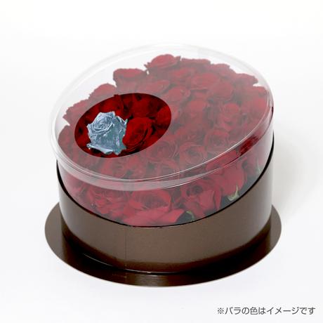 En(red-アクアマリン-Mar. 3月)