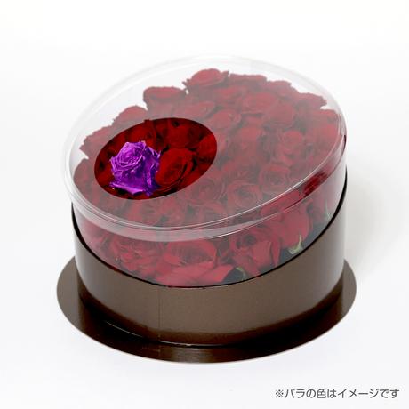 En(red-アメジスト-Feb. 2月)