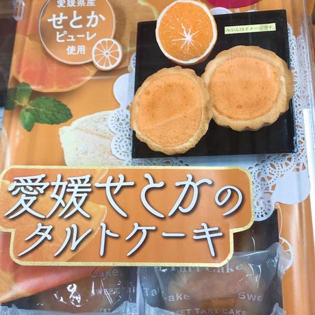 愛媛せとかのタルトケーキ大(14個入り
