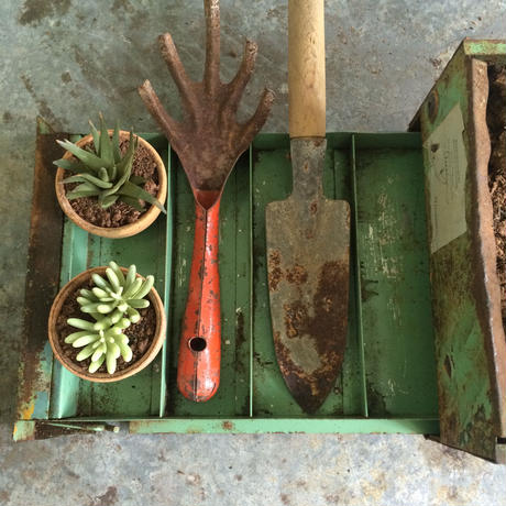 GREEN CONTAINER 3