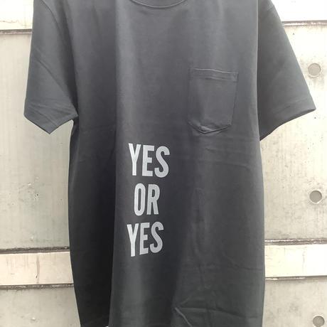 """🔴新発売 DRESSSEN  DSST11  DRES""""SPECIAL""""SSEN    YES  T-SHIRTS (GREYロゴ)BLACK COLOR"""