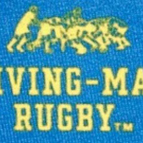 DRIVING-MAUL RUGBY ロゴ マスク TOKYO BLUE * ICHO GOLD