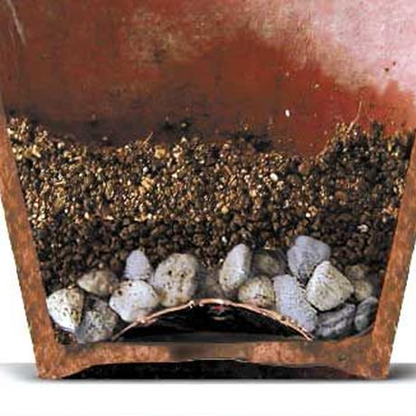 防虫銅底網(NC-65)5個入