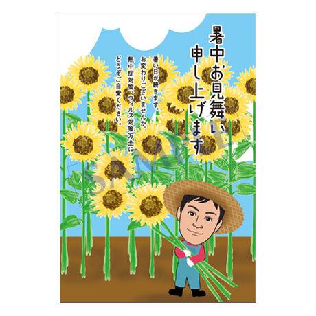 メッセージカード/暑中見舞い/21-0978/1セット(10枚)