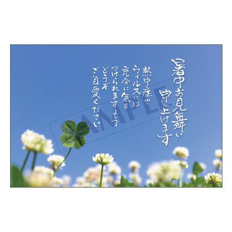 メッセージカード/暑中見舞い/20-0953/1セット(10枚)