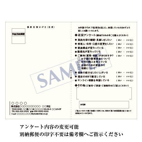 アンケートハガキ/寒中見舞い/1セット(100枚)QC-2002 【往復タイプ】