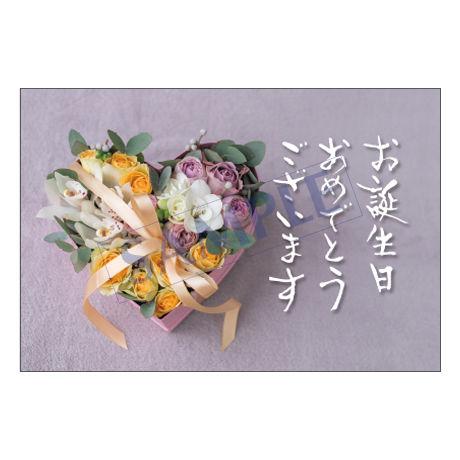 メッセージカード/バースデーカード/20-0921/1セット(10枚)