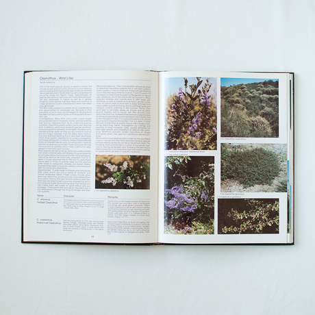 Book (古書) | Trees and Shrubs for Dry California Landscapes
