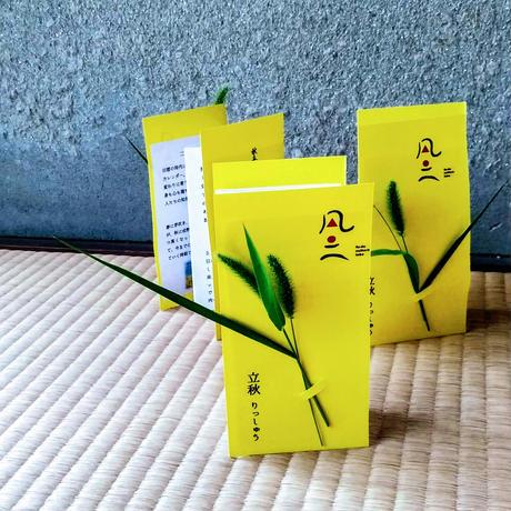 風土便り【旬菜定期便+Noraチケット】毎月最終土/日お届け