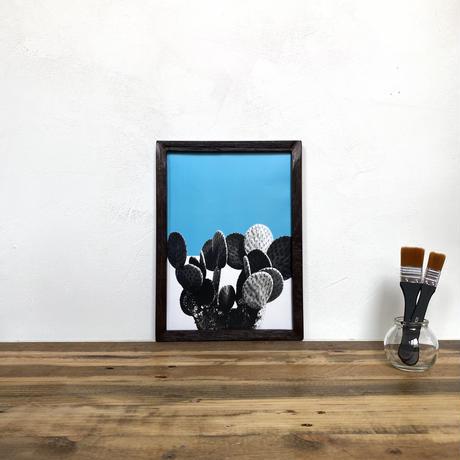うちわサボテン「植物 カラー」  A4 ポスター & 古材 ポスターフレーム 壁掛け