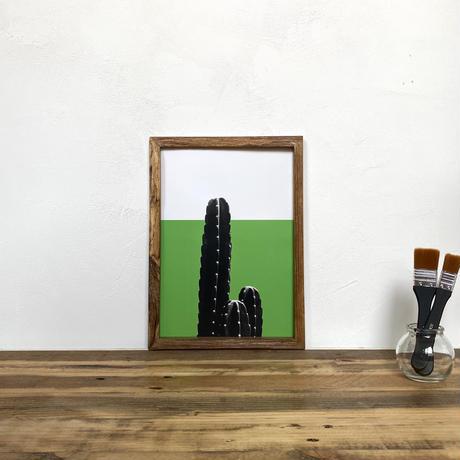 柱サボテン「植物 カラー」  A4 ポスター & 古材 ポスターフレーム 壁掛け