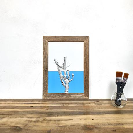 ユーフォルビア ホワイトゴースト「植物 カラー」  A4 ポスター & 古材 ポスターフレーム 壁掛け
