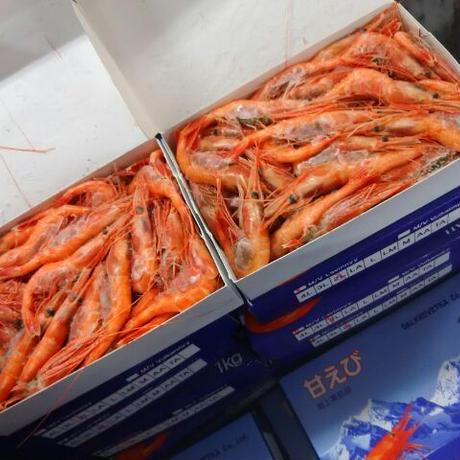 冷凍甘エビ 2Lサイズ   1kg(冷凍)