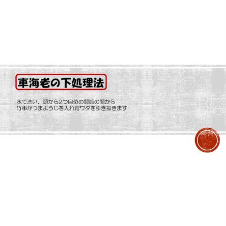 活け車海老(30g×20本 600g入り)