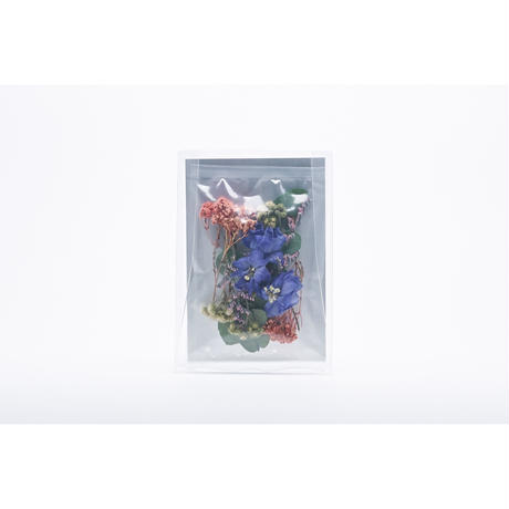 """POST FLOWER """"colorful ver."""""""