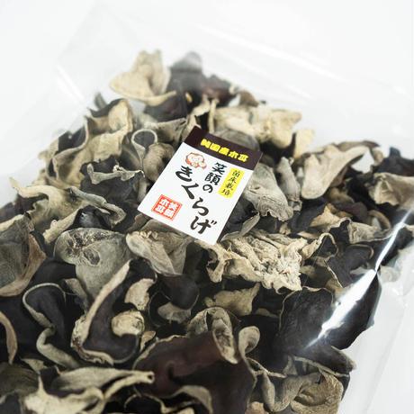【業務用に最適!】ふぞろいきくらげ(黒) 100g