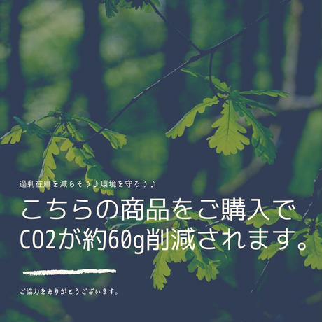 5dc25a27c6aeea26d1c534b3