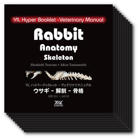 YILハイパーブックレット-ヴェテリナリマニュアル「ウサギ-解剖-骨格」の10冊セット