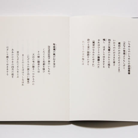 『写訳 春と修羅』詩・宮沢賢治 写真とエッセイ・齋藤陽道 /解説・若松英輔
