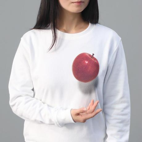 妄想マッピングトレーナー/ Magical Apple