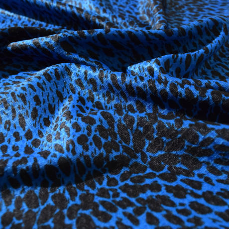 Cierpinski T(Blue) E1005520