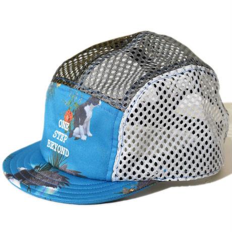 GLORY Cap(BlueGreen)