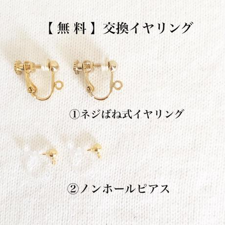【交換 無料】イヤリング交換パーツ