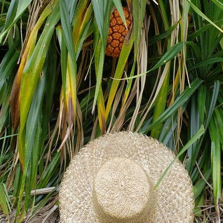あだん葉帽子