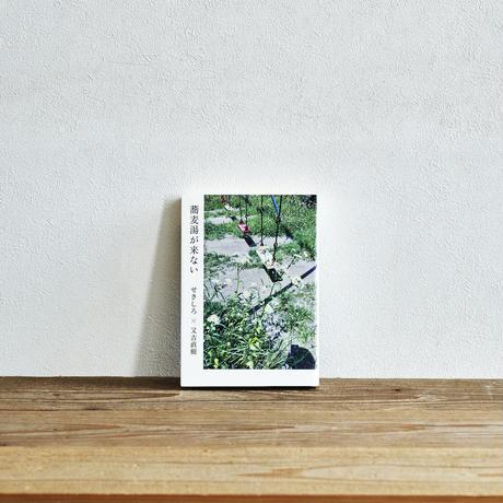 『蕎麦湯が来ない』/選書者:水野史恵・編集者