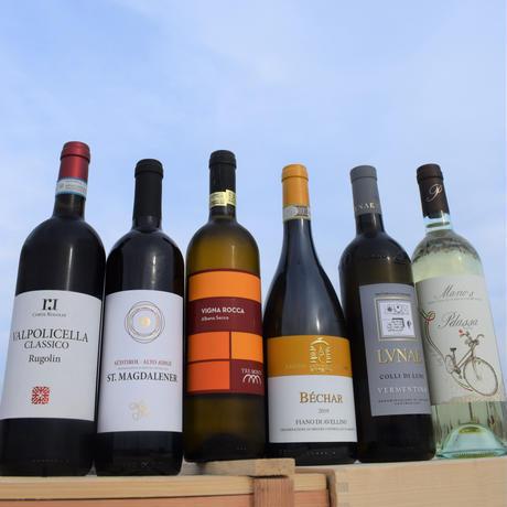 肥後橋/ピッツァリア・ラポルタ臼井のおすすめ【白ワイン好きの方のための6本セット】