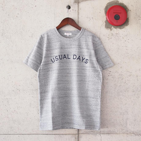 SEIRYU & Co.〈セイリューアンドコー〉 USUAL DAYS T-SHIRT GERY