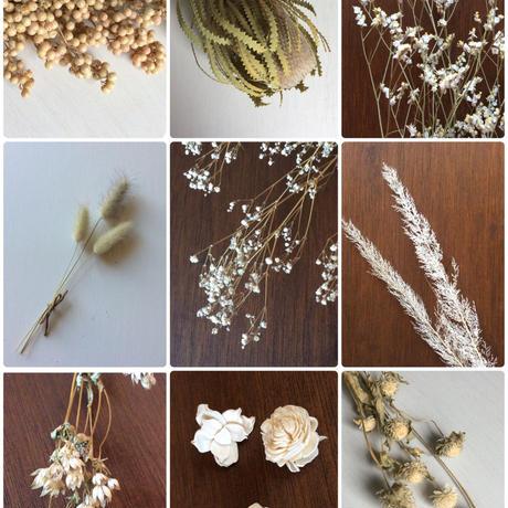 花材サンプル♪(ホワイト)