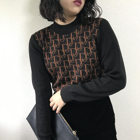 Dior trotter turtle knit