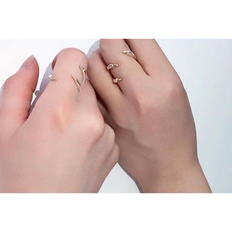 dinosour ring