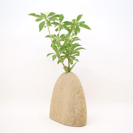 Real Stone Vase 1241